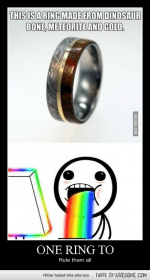 One Ring Tohttp://omg-humor.tumblr.com: THIS IS ARING MADE FROM DINOSAUR  BONE, METEORITE AND GOLD.  ONE RING TO  Rule them all  TASTE OF AWESOME.COM  Hitler hated this site too  VIA 9GAG.COM One Ring Tohttp://omg-humor.tumblr.com