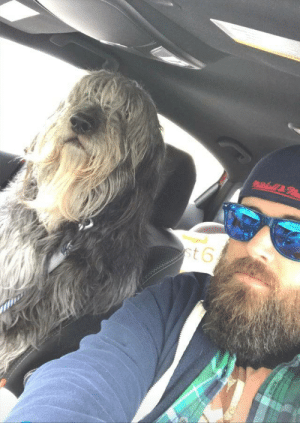 This is Ben. He has a beard. And he is human sized. We get fun looks in traffic. (Source): This is Ben. He has a beard. And he is human sized. We get fun looks in traffic. (Source)