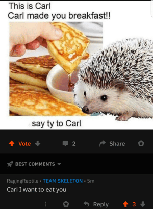 Me irl: This is Carl  Carl made you breakfast!!  say ty to Carl  4 Vote  Share  BEST COMMENTS  RagingReptile TEAM SKELETON 5m  Carl I want to eat you Me irl