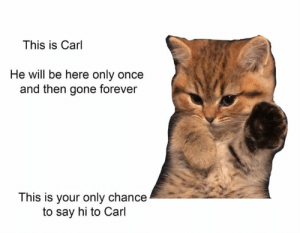 Gone Forever: This is Carl  He will be here only once  and then gone forever  This is your only chance  to say hi to Carl