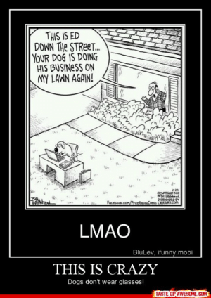 this is crazyhttp://omg-humor.tumblr.com: THIS IS ED  DOWN THE STREET.  YOUR DOG IS DOING  HIS BUSINESS ON  MY LAWN AGAIN!  2-23  COPTIHT 2012  - DYBLLLSTchead  DISTRIDUTED DY  Facebook.com/FreeRangeComic CREATORS.COM  Whiehend  LMAO  BluLev, ifunny.mobi  THIS IS CRAZY  Dogs don't wear glasses!  TASTE OF AWESOME.COM this is crazyhttp://omg-humor.tumblr.com