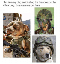 MAYDAY, MAYDAY!!! HIT THE DECK! My dog, el Chapo, is going to go fucking berserk 😂😂😂 (Follow @coolest_kid_on_the_block): This is every dog anticipating the fireworks on the  4th of July. It's a  warzone out here  C E MAYDAY, MAYDAY!!! HIT THE DECK! My dog, el Chapo, is going to go fucking berserk 😂😂😂 (Follow @coolest_kid_on_the_block)