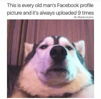 Bruh, Chill, and Dumb: This is every old man's Facebook profile  picture and it's always uploaded 9 times  IG: @tank sinatra Too true! 😂 • • @tank.sinatra relatable hilarious nochill ladbible rollsafe savage lifehacks live petty tag chill love like banter childish Lmao meme Funny haha memes Zerochill smh textpost lol dumb bruh funnymeme