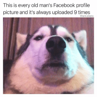 Facebook, Funny, and Old: This is every old man's Facebook profile  picture and it's always uploaded 9 times  @tank.sinatra At least 9 times