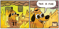 Stock Market, Herbert Hoover, and Crash: THIS IS FINe. Herbert Hoover after the Stock Market Crash of 1929: https://t.co/QzrcdXxdNH