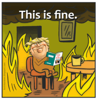 this is fine: This is fine.  lI  FIRE  FURY
