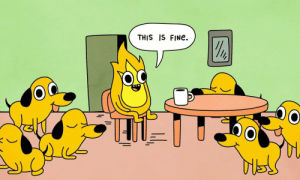From r/memes: THIS IS FINe.  o C From r/memes