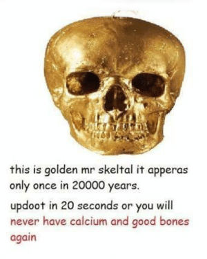 Doot doot via /r/memes https://ift.tt/2y7c5KG: this is golden mr skeltal it apperas  only once in 20000 years.  updoot in 20 seconds or you will  never have calcium and good bones  again Doot doot via /r/memes https://ift.tt/2y7c5KG