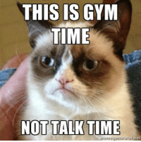 Now go away.   Gym Memes: THIS IS GYM  TIME  NOT TALK TIME  mennegenerator net Now go away.   Gym Memes