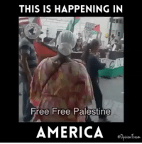 """Constitution, Conservative, and Usa: THIS IS HAPPENING IN  Free Free Palestine  AMERICA  @Opinion tomm. Typical """"loving"""" Palestinians here... I will always support Israel. 🇮🇱🇺🇸 liberalismisamentaldisorder israel supportisrael isupportisrael israeli liberals libbys democraps liberallogic liberal ccw247 conservative constitution presidenttrump resist stupidliberals merica america stupiddemocrats donaldtrump trump2016 patriot trump yeeyee presidentdonaldtrump draintheswamp makeamericagreatagain trumptrain maga Add me on Snapchat and get to know me. Don't be a stranger: thetypicallibby Partners: @theunapologeticpatriot 🇺🇸 @too_savage_for_democrats 🐍 @thelastgreatstand 🇺🇸 @always.right 🐘 @keepamerica.usa ☠️ TURN ON POST NOTIFICATIONS! Make sure to check out our joint Facebook - Right Wing Savages Joint Instagram - @rightwingsavages Joint Twitter - @wethreesavages Follow my backup page: @the_typical_liberal_backup"""