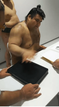 Memes, 🤖, and How: This is how a sumo wrestler signs an autograph https://t.co/0vnusCnoon