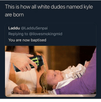 Funny, Music, and Rap: This is how all white dudes named kyle  are born  Laddu @LadduSenpai  Replying to @ilovesmokingmid  You are now baptised This kid gonna grow up to and drive a lifted truck chew dip and blast rap music with his subs on full bass
