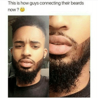 This be making me mad 😂 my beard connected but now I can't 1 up these niggas!!!!: This is how guys connecting their beards  now? This be making me mad 😂 my beard connected but now I can't 1 up these niggas!!!!