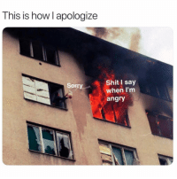 Funny, Memes, and Shit: This is how l apologize  Shit I say  when I'mm  angry  Sorry SarcasmOnly