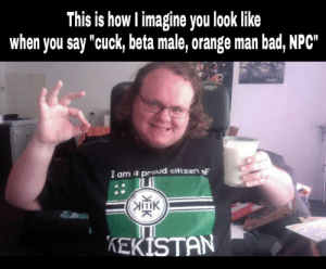 "Bad, Politics, and Definition: This is how l imagine you loolk like  when you say ""cuck, beta male, orange man bad, NPC  I am a proud citizen oF  IlIK  KEKİSTAN If this is the definition of ""real man"" I'll stay a beta male"