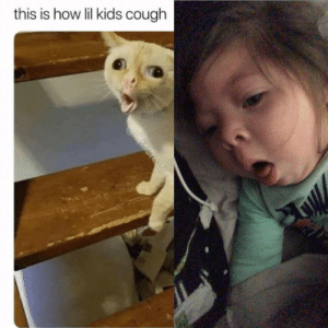 Dank, Memes, and Target: this is how lil kids cough Memes never lie, my one year old coughing. by Bentleyc23 MORE MEMES