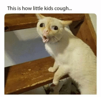 Kids, How, and This: This is how little kids cough...