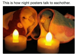 meirl by KABAR_in_the_gay_bar FOLLOW HERE 4 MORE MEMES.: This is how night posters talk to eachother.  9 meirl by KABAR_in_the_gay_bar FOLLOW HERE 4 MORE MEMES.