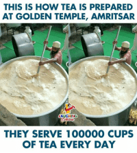Indianpeoplefacebook, How, and Tea: THIS IS HOW TEA IS PREPARED  AT GOLDEN TEMPLE, AMRITSAR  LAUGHING  THEY SERVE 100000 CUPS  OF TEA EVERY DAY