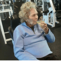 This is how the gym should be done.  (Ebaumsworld.com): This is how the gym should be done.  (Ebaumsworld.com)