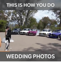 I Bet, Memes, and Wedding: THIS IS HOW YOU DO  WEDDING PHOTOS I bet this took some convincing 👀 📹:Sean Reeves