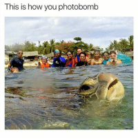 Expert level. | Follow @aranjevi for more!: This is how you photobomb Expert level. | Follow @aranjevi for more!