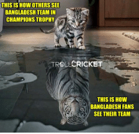 😂😂  -Devil-: THIS IS HOWOTHERSSEE  BANGLADESH TEAM IN  CHAMPIONS TROPHY  CRICKET  TROLL  THIS IS HOW  BANGLADESH FANS  SEE THEIR TEAM 😂😂  -Devil-