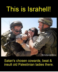 Memes, Beats, and Free: This is Isra hell!  FB//Yes PalestineWillBeFree  Satan's chosen cowards, beat &  insult old Palestinian ladies there. Palestine will be free