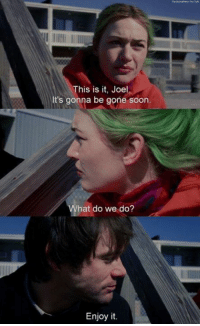 Memes, Soon..., and Eternal Sunshine of the Spotless Mind: This is it, Joel  It's gonna be gone soon.  hat do we do?  Enjoy it. Eternal Sunshine of the Spotless Mind