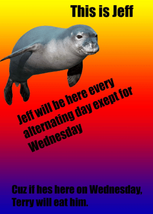 Wednesday, Irl, and Me IRL: This is Jeff  Jeff will be here every  alternating day exeptfor  Wednesday  Cuz if hes here on Wednesday  Terry will eat him. me_irl