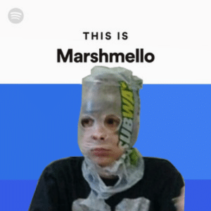 Pass me the aux cord: THIS IS  Marshmello Pass me the aux cord