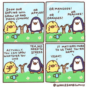 This is me every time I start planning out my orchard but instantly forget what fruit trees I've planted. Comic by @wholesomecomics on Instagram.: This is me every time I start planning out my orchard but instantly forget what fruit trees I've planted. Comic by @wholesomecomics on Instagram.