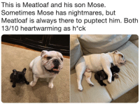 Meatloaf, Him, and Son: This is Meatloaf and his son Mose.  Sometimes Mose has nightmares, but  Meatloaf is always there to puptect him. Both  13/10 heartwarming as h*ck Puppo Protec