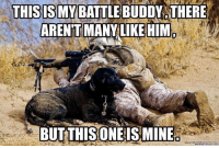 Memes, Heroes, and Leggings: THIS IS MY BATTLE BUDDY THERE  ARENTMANY LIKE HIM  BUT THIS ONE IS MINE  meme crunch com RESPECT for our four legged Heroes from all of us here at www.militaryluggage.com