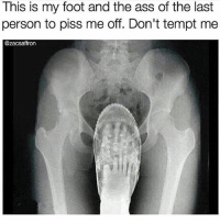 Ass, Lmao, and Memes: This is my foot and the ass of the last  person to piss me off. Don't tempt me  @Zacsaffron 😂😂😭 Lmao best compilation ever! Who betrayed who? I think the husband ❤️: Please leave a like much appreciated 🔥Hashtags: residentevil twitch counterstrike rogueone csgo callofduty leagueoflegends darksouls overwatch clashroyale clashofclans gta5 gtav steam pc fifaultimateteam pokemonsunandmoon battlefield1 gtavonline fifa17 wiiu minecraft zombies mustwatch mlg xboxone rockstargames ps4 pcgaming 😎Credit: