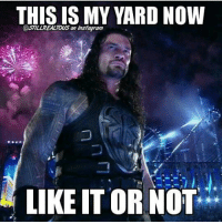 What were your thoughts on wrestlemania ? I thought the matches left a lot to be desired. No cool entrances (other than Triple H riding a big wheel) and Taker retired. wwe wwememes raw share love prowrestling wrestling follow memes lol: THIS IS MY YARD NOW  LIKE ITOR NOT What were your thoughts on wrestlemania ? I thought the matches left a lot to be desired. No cool entrances (other than Triple H riding a big wheel) and Taker retired. wwe wwememes raw share love prowrestling wrestling follow memes lol