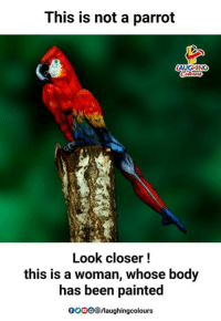 Closers: This is not a parrot  AUGHING  Look closer!  this is a woman, whose body  has been painted  0OOO/laughingcolours
