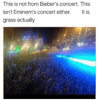 Funny, Meme, and Game: This is not from Bieber's concert. This  isn't Eminem's concert either  It is  grass actually (@sonny5ideup ) is killing the meme game!