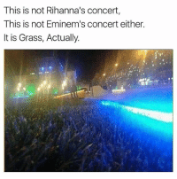 Memes, Madison Square Garden, and Square: This is not Rihanna's concert,  This is not Eminem's concert either.  It is Grass, Actually. Madison Square Garden 😁
