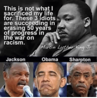 One American. Three Racists. One Picture. -- CDH Gun Rights Gear: http://goo.gl/YQERIk: This is not what I  sacrificed my life  for. These 3 ídiots  are succeeding in  erasing 50 years  of progress in  the war on  racism.  Martin Lche King  Jackson  Obama Sharpton One American. Three Racists. One Picture. -- CDH Gun Rights Gear: http://goo.gl/YQERIk