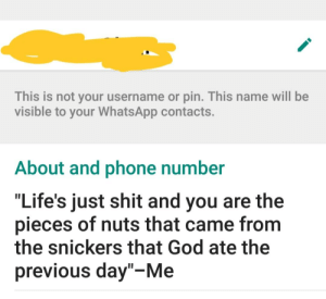 This Is Not Your Username Or Pin This Name Will Be Visible To Your Whatsapp Contacts About And Phone Number Life S Just Shit And You Are The Pieces Of Nuts That Came