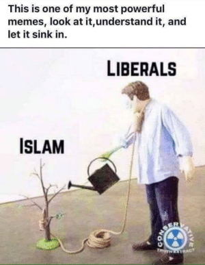 Facebook, Memes, and Islam: This is one of my most powerful  memes, look at it,understand it, and  let it sink in  LIBERALS  ISLAM  ER  TRUTH TRA  VICTOVES Found on Facebook.