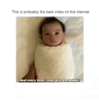 Internet, Lit, and Best: This is probably the best video on the internet  And every time istep up in the buildin I will never not repost this video when it crosses my feed. Hope your day is as lit as this baby when it's unleashed 🙏🏽😂 (@barrysbanterbus 🇬🇧)
