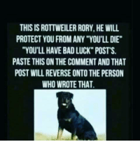 "Rory: THIS IS ROTTWEILER RORY. HE WILL  PROTECT YOU FROM ANY ""YOU'LL DIE""  ""YOU'LL HAVE BAD LUCK"" POSTS.  PASTE THIS ON THE COMMENTAND THAT  POST WILL REVERSE ONTO THE PERSON  WHO WROTE THAT."