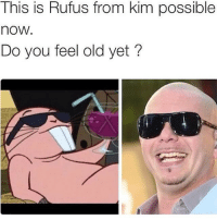Kim Possible, Memes, and Old: This is Rufus from kim possible  nOW  Do you feel old yet? FFS 😩😩😂 Follow my personal @connorinsta