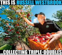 Nba, Russell Westbrook, and Time: THIS IS RUSSELL WESTBROOK  TRIPLE-DOUBLES  TRIPLE-DOUBLE  TRIPLE DOUBLE  @NBAMEMES  TRIPLE DOUBLE  TRIPLE-DOUBLE  TRIPLE DOUBLE  TRIPLE-DOUBLE  TRIPLE DOUBLE  TRIPLE DOUBLE  TRIPLE DOUBl  ,  TRIPLE-DOUBLE  TRIPLE-DOUBLE  RIPLE-DOUBLE  TRIPLE DOUBLE  TRIPLE-DOUBLE  TRIPLE DOUBLE  IRIPLE-DOUBLE  TRIPLE-DOUBLE  COLLECTING TRIPLE-DOUBLES TOP 3 PG ALL TIME?!
