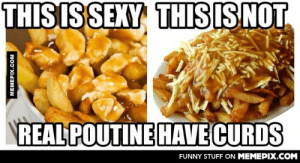As a Quebecer…omg-humor.tumblr.com: THIS IS SEXY THIS ISNOT  REAL POUTINE HAVE CURDS  FUNNY STUFF ON MEMEPIX.COM  MEMEPIX.COM As a Quebecer…omg-humor.tumblr.com