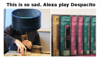 Despacito: This is so sad. Alexa play Despacito  amazon