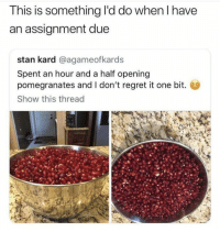 Regret, Stan, and One: This is something I'd do when I have  an assignment due  stan kard @agameofkards  Spent an hour and a half opening  pomegranates and I don't regret it one bit.  Show this thread