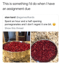 Regret, Stan, and Humans of Tumblr: This is something l'd do when I have  an assignment due  stan kard @agameofkards  Spent an hour and a half opening  pomegranates and I don't regret it one bit.  Show this thread